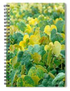 Grapevines In Azores Islands Spiral Notebook