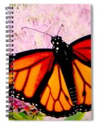 Graphic Monarch Spiral Notebook