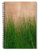 Grass And Stucco Spiral Notebook