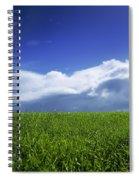 Grass In A Field, Ireland Spiral Notebook