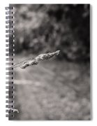 Grass Over Dirt Road Spiral Notebook