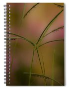 Grass Seeds Spiral Notebook