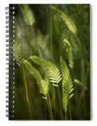 Grass Stems And Seed No.2129 Spiral Notebook