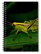 Grasshopper 1 Spiral Notebook