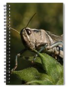 Grasshopper 2 Spiral Notebook