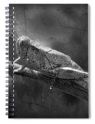 Grasshopper And Grunge In Black And White Spiral Notebook