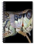 Grasshopper With Parasitic Mite Spiral Notebook