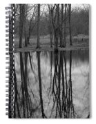 Gray Day Reflections Spiral Notebook