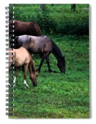 Grazing - Watercolor Spiral Notebook