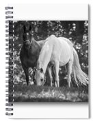 Grazing In Black And White Spiral Notebook
