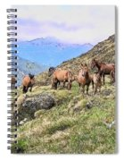 Grazing In The Foothills Spiral Notebook
