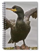 Great Black Cormorant Spiral Notebook