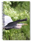 Great Blue Flight Spiral Notebook