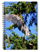 Great Blue Heron Cover Up Spiral Notebook