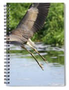 Great Blue Heron Escape Spiral Notebook