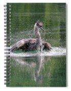 Great Blue Heron Having A Bath Spiral Notebook