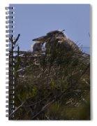 Great Blue Heron In Nest Spiral Notebook