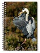 Great Blue Heron Landing Spiral Notebook