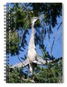 Great Blue Heron Meditation Pacific Northwest Spiral Notebook