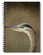 Great Blue Heron Profile Spiral Notebook