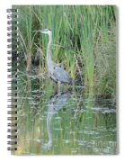 Great Blue Heron With Reflection Spiral Notebook