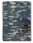 Great Blue Heron With Snack Spiral Notebook