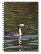 Great Crested Grebe With Breakfast Spiral Notebook