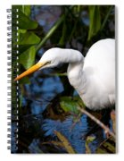 Great Egret Fishing Spiral Notebook