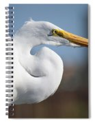 Great Egret Portrait Spiral Notebook