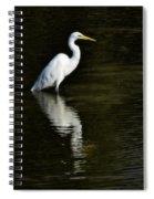 Great Egret Reflection  Spiral Notebook