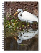 Great Egret Searching For Food In The Marsh Spiral Notebook