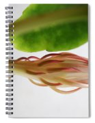 Great Expectations Spiral Notebook