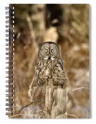 Great Gray Owl Spiral Notebook
