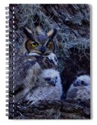 Great Horned Owl Twins Spiral Notebook