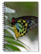 Great Mormon Spiral Notebook