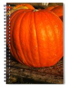 Great Orange Pumpkin Spiral Notebook