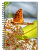 Great Spangled Fritillary Butterfly Spiral Notebook