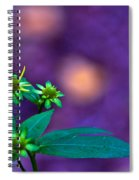 Green And Turquoise Spiral Notebook