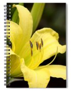 Green And Yellow - Lily Spiral Notebook