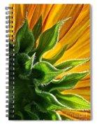 Green Backing Spiral Notebook