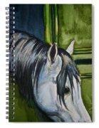 Green Barn Spiral Notebook