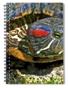 Green Eyed Lady Spiral Notebook