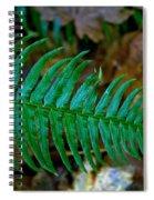 Green Fern Spiral Notebook
