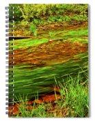 Green Forest River Spiral Notebook