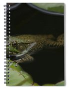 Green Frog And Lily Pads 9613 Spiral Notebook