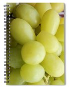 Green Grapes And Purple Mum Spiral Notebook
