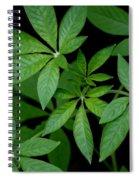 Green Is Beautiful Spiral Notebook