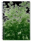 Green Is My Valley Spiral Notebook