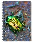 Green Junebug Spiral Notebook