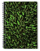 Green Leaf Spiral Notebook